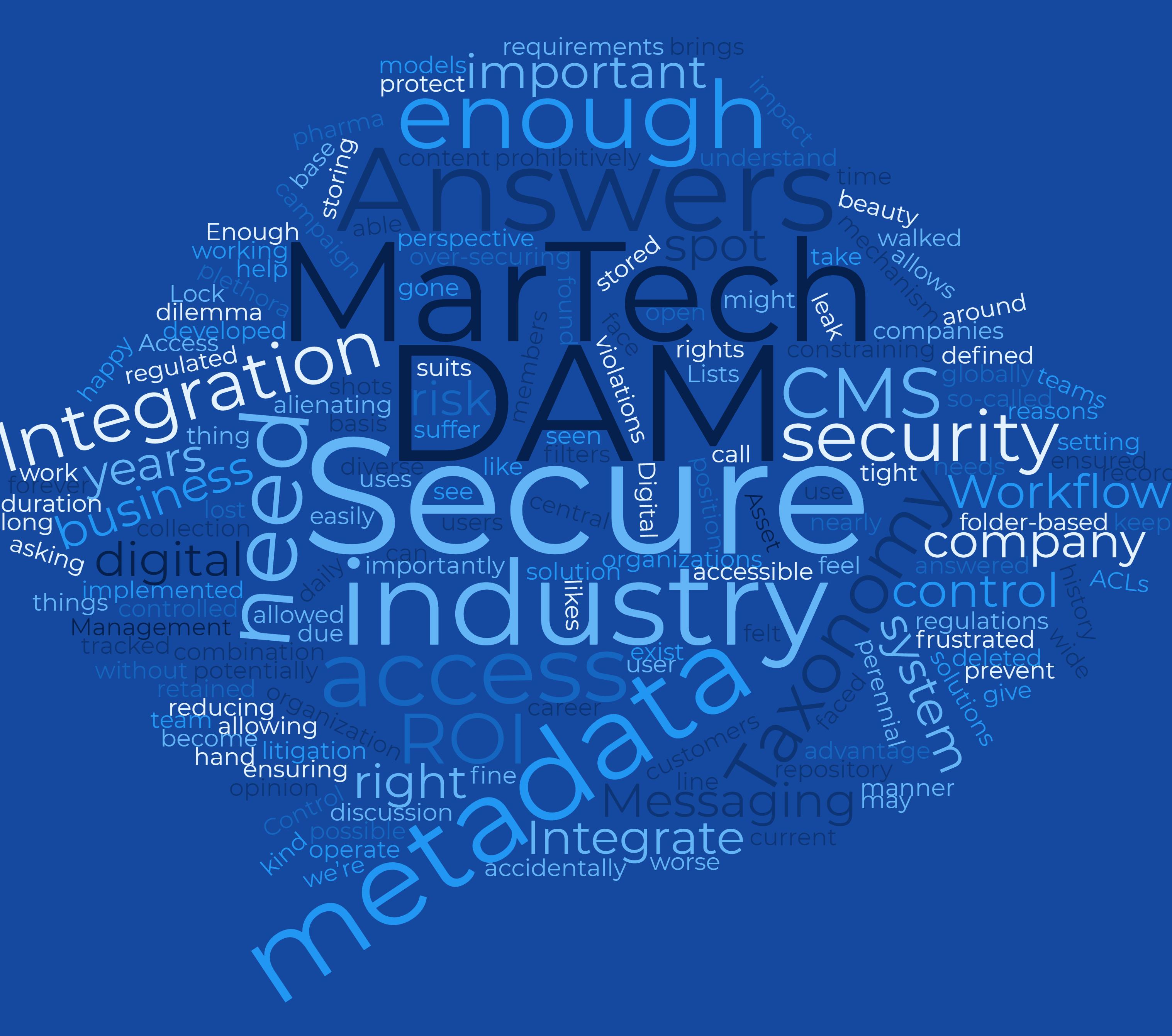 DAMGeeks - Digital Asset Management Experts - Word Cloud