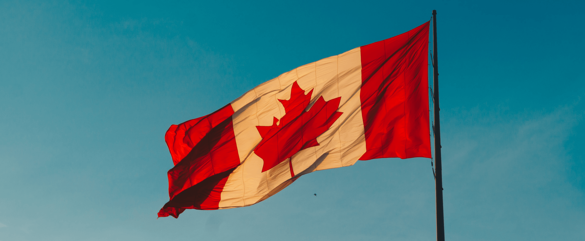 Canadian flag in the wind against a blue sky.